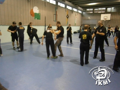 Stage IKMI International Krav Maga Institute - fighting